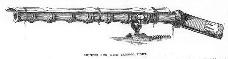 Arma de bambu