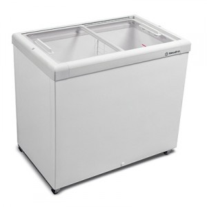 Freezer 303 Litros