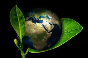 Ensine seu filho a ser sustentável e salve o mundo!