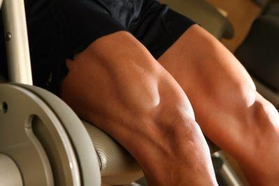 Segredos para Definição Muscular