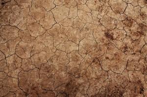 Diversos estados sofrem com escassez de água. (Foto:Reprodução)