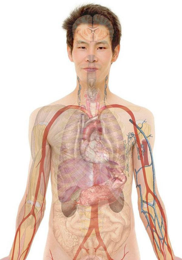 A importância da respiração.
