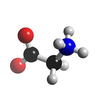 aminoácido