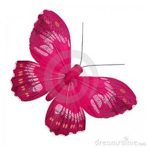 borboleta cor de rosa