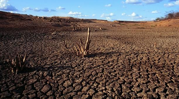 Um ecossistema único no Brasil.
