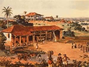 Colônia brasileira