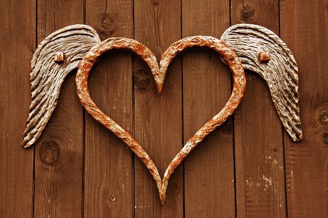 Coração com asas.