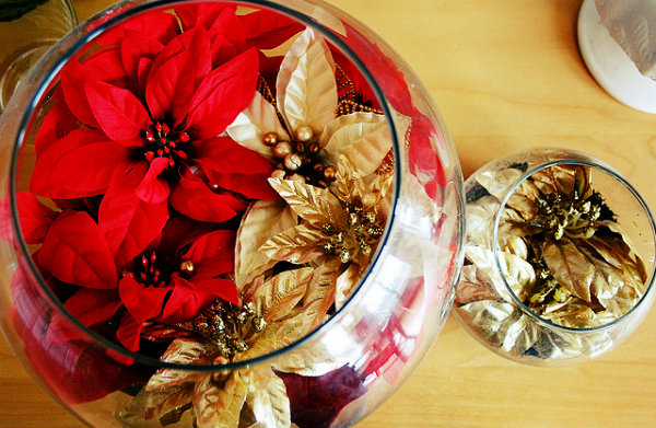 Flores vermelhas e douradas;