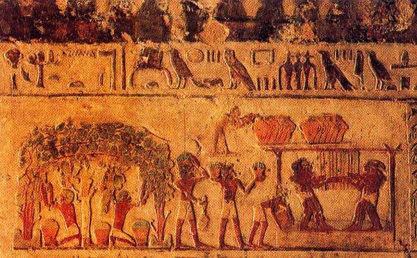 Os desenhos egípcios eram uma forma de marcar a história