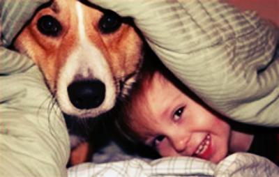 As zoonoses são causadas pela prática de dormir com o cachorro