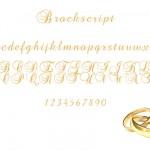 fonte dourada