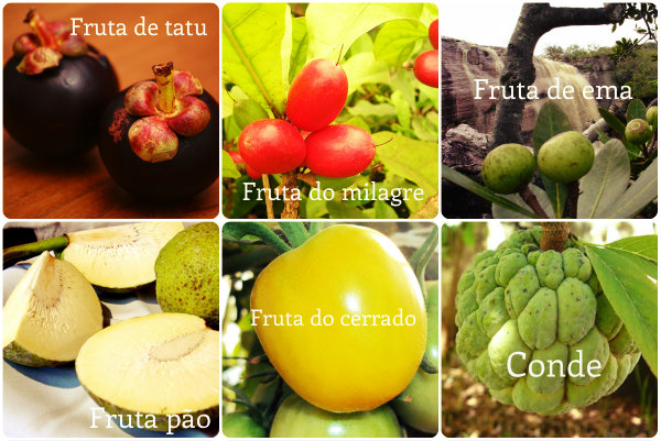 Frutas diferentes iniciadas com a letra F.