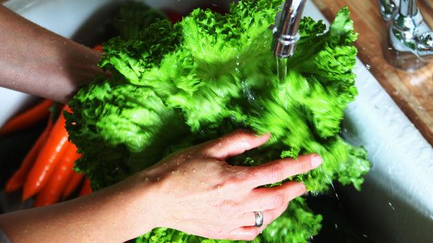 Higienizar os alimentos é essencial para evitar doenças e contaminações