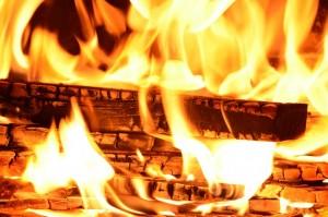 """O carvão ativado é feito a partir de madeiras devidamente """"queimadas""""."""