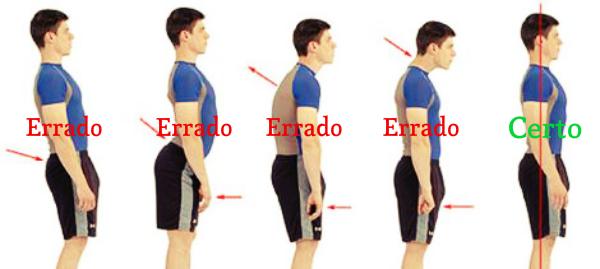 Tipos de postura.