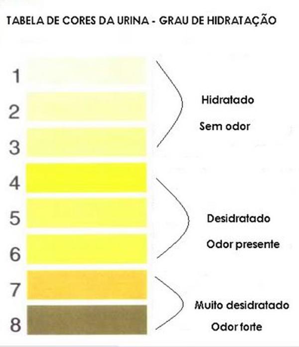 Confira os níveis de desidratação no seu corpo através da tabela.